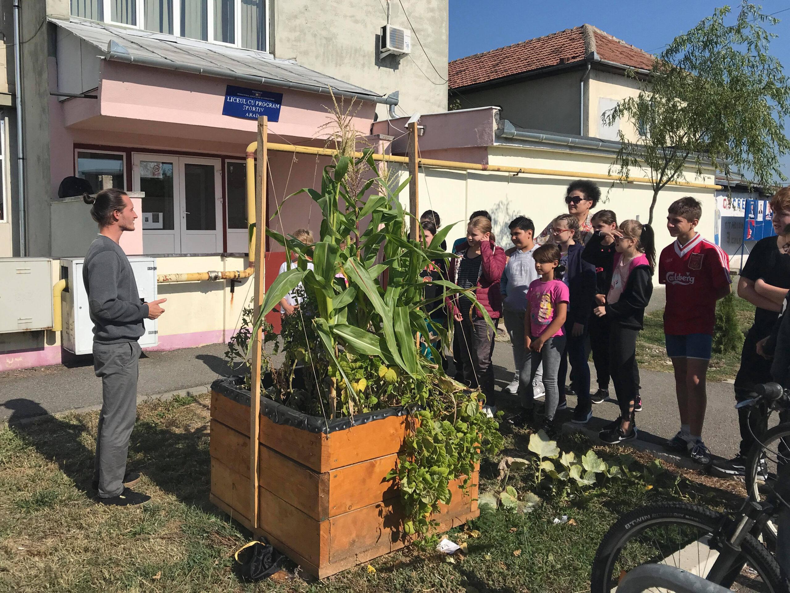 Educație și conștientizare ecologică